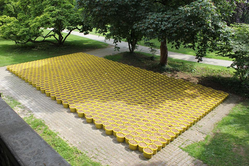 Lois Weinberger, Mobiler Garten, 2014, Start im Mai